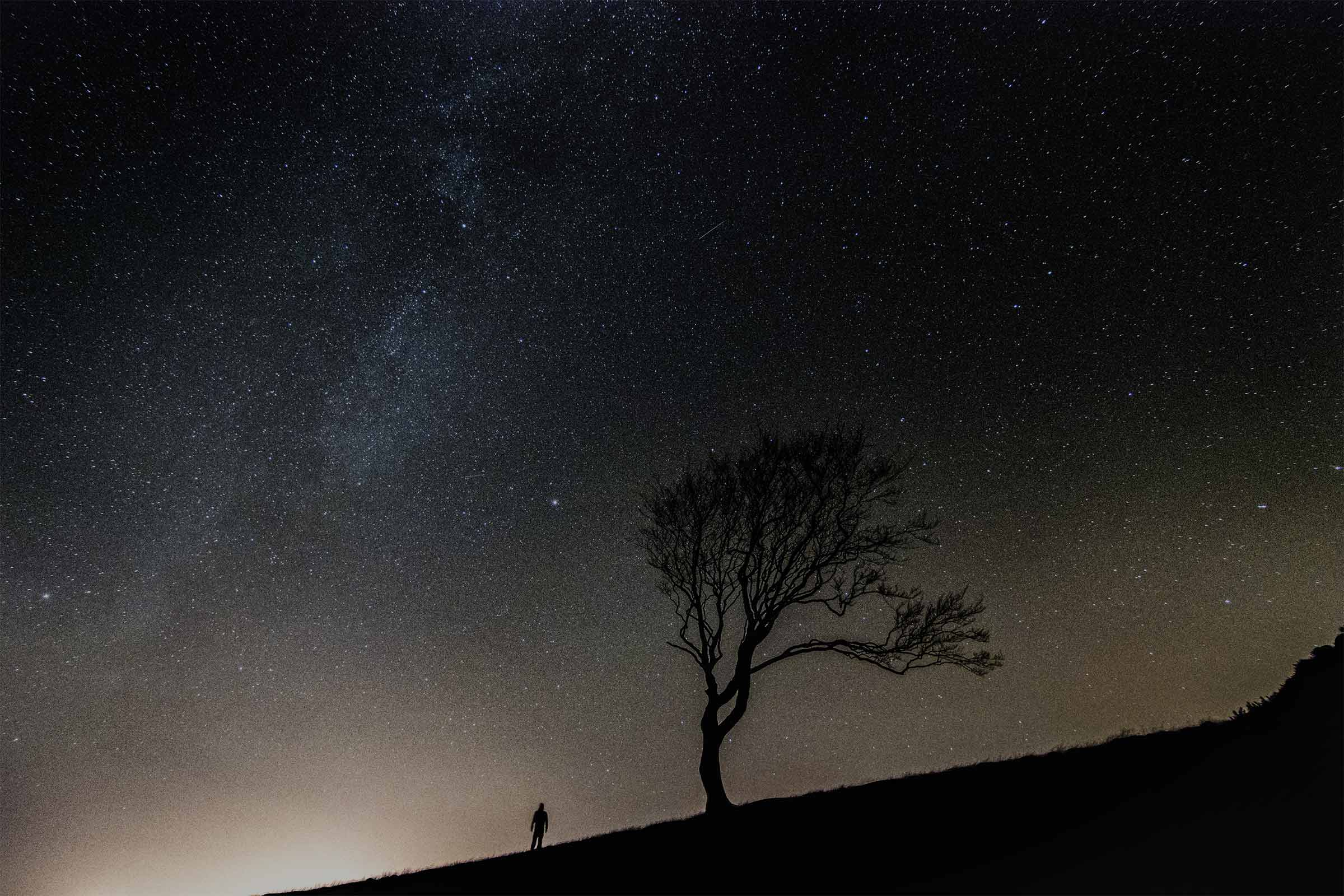 Tree on a hill on a starry night