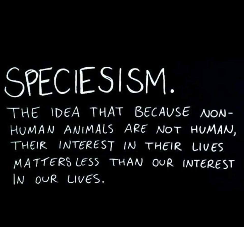 speciesism960x895